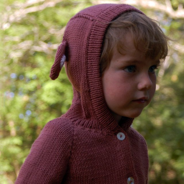 Organic Cotton Monkey Sweater