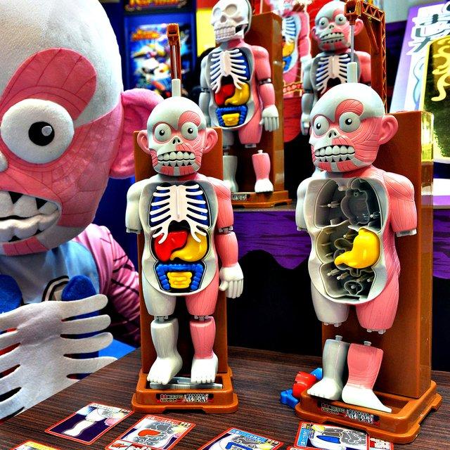 Megahouse Kei Human Body Mannequin Game » Petagadget