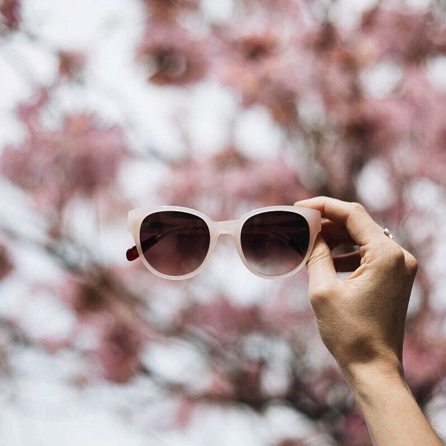 Peach Thelma Sunglasses by Triwa