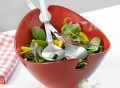Milano Salad Bowl with Servers