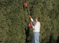 Cordless Long Reach Hedge Trimmer