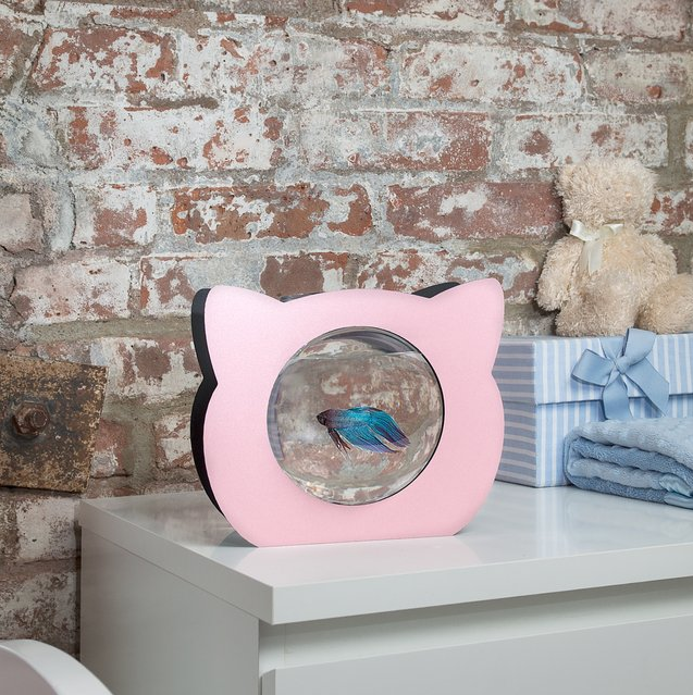 Zooquariums: Cat Shaped Betta Fish Tank