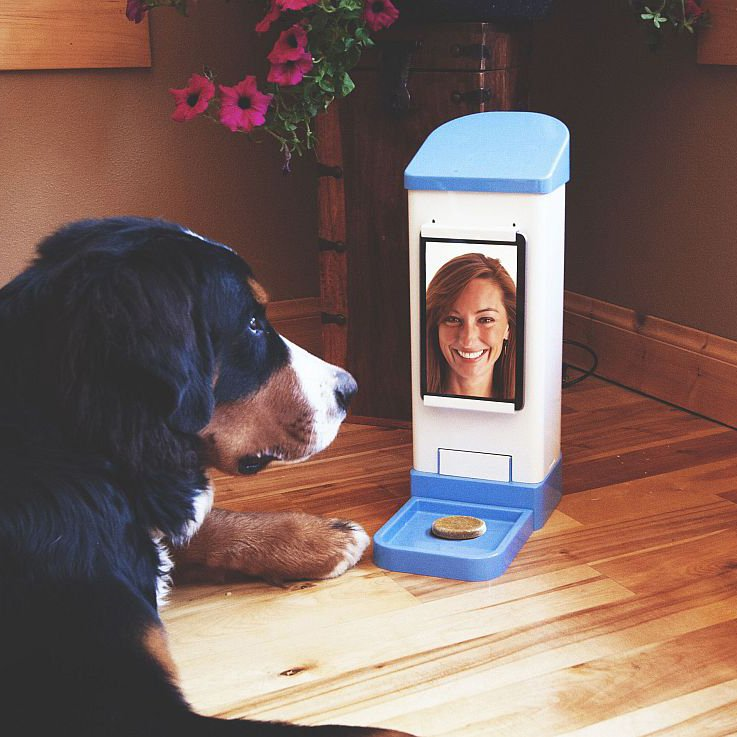 icPooch WiFi Treat Dispenser