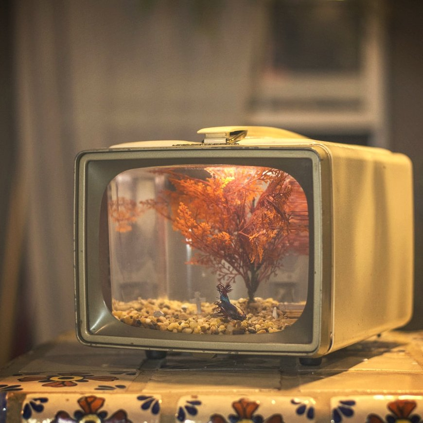 Vintage TV Aquarium