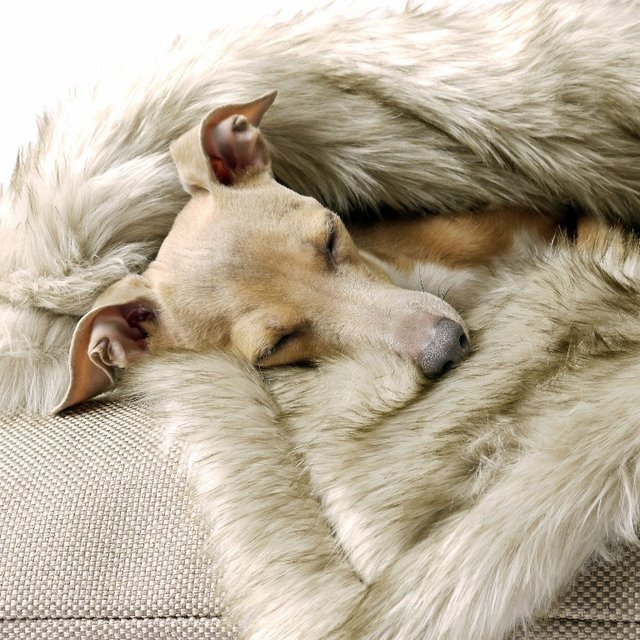 Faux Fur Dog Blanket