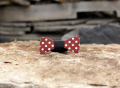 Blaise Painted Wood Bow Tie by Two Guys Bow Ties