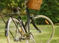 Sommer Bicycle by Papillionaire