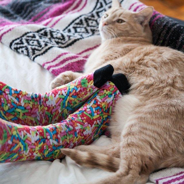 Sprinkles Foodie Crew Socks