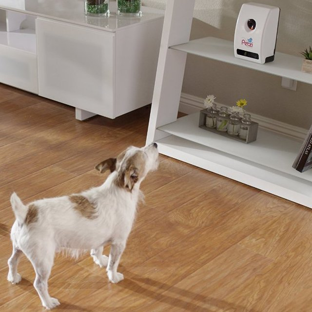 Wi-Fi Pet Camera & Treat Dispenser