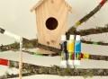 Design a Birdhouse Kit