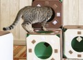 Cat Jungle Gym Stackable Cubes