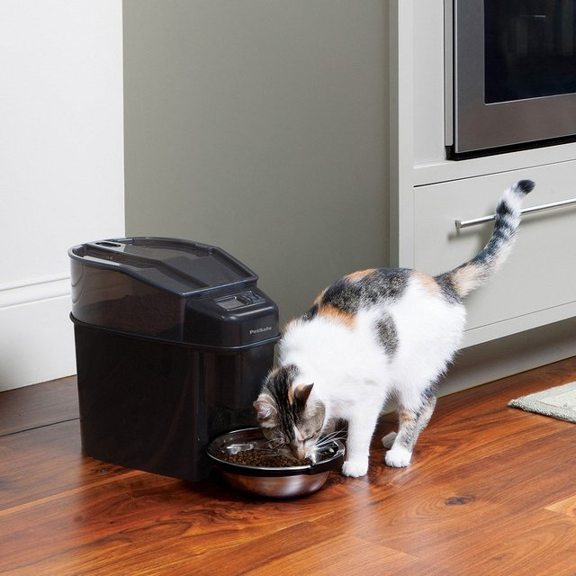 Simply Feed Automatic Pet Feeder