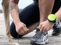 Lishinu Hands-Free Dog Leash