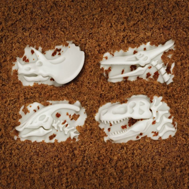 Fossil Food Cupcake Molds
