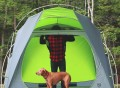 Standing Room 4P Camping Tent