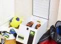 StinkBOSS Antibacterial Shoe Deodorizer & Dryer