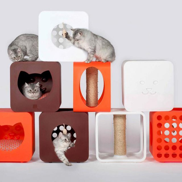 Kitty Kasa Cat Play System