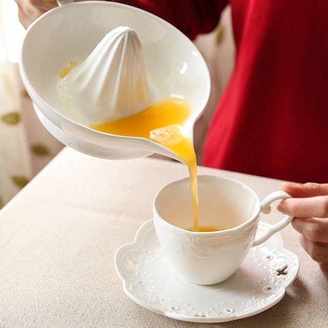 Citrus Juicer Reamer with Handle