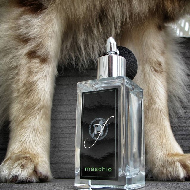 Dog Perfume by Dog Fashion Spa