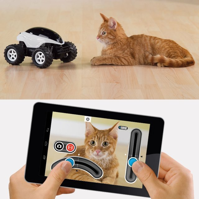Live Video Feed RC Buggy