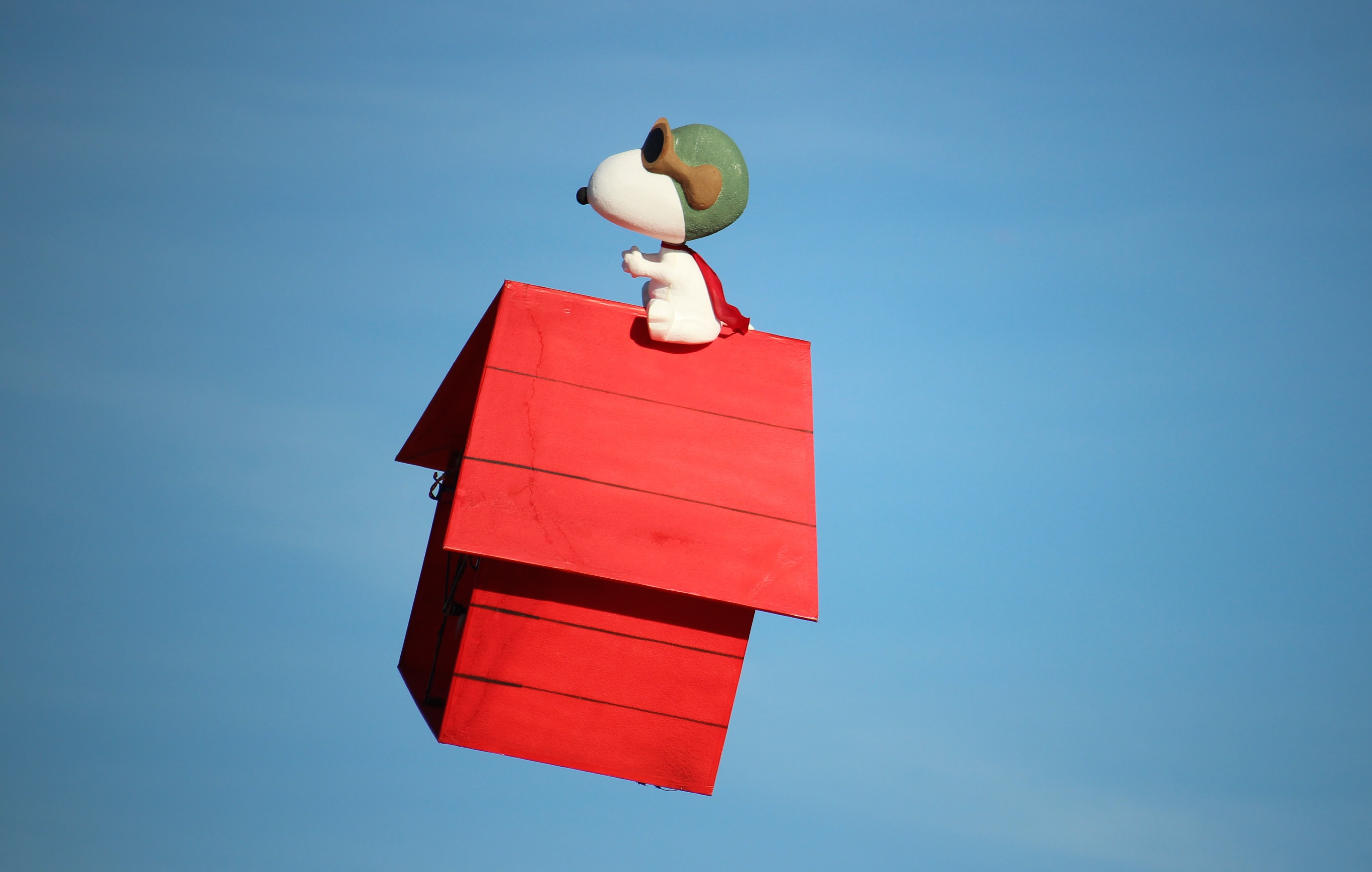 R/C Flying Doghouse