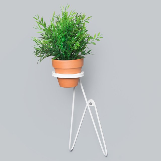 Suspended Wall Planter