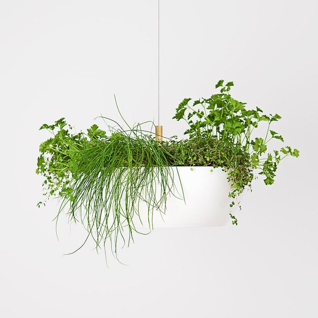 Well Hanging Planter