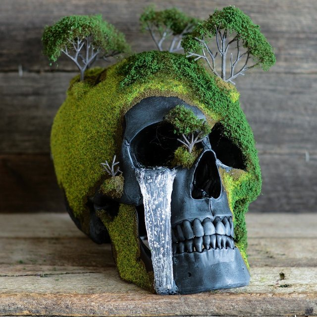 Spring Bonsai Mountain Skull