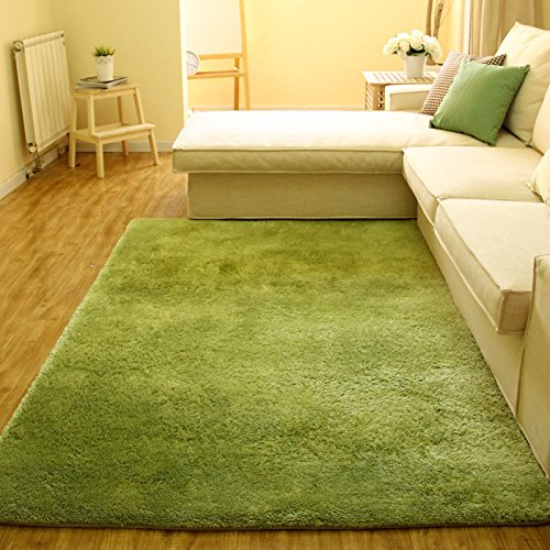 Super Soft Modern Shag Area Silky Smooth Rugs
