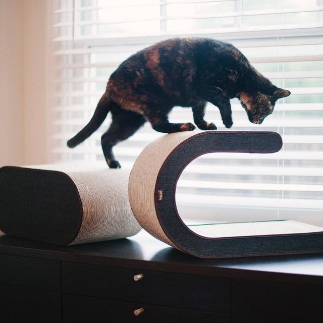 Arty Cat Scratcher by P.L.A.Y.