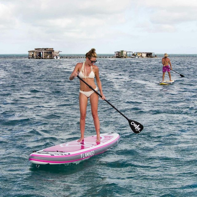 Flamingo Paddleboard Combo by Caribe SUP