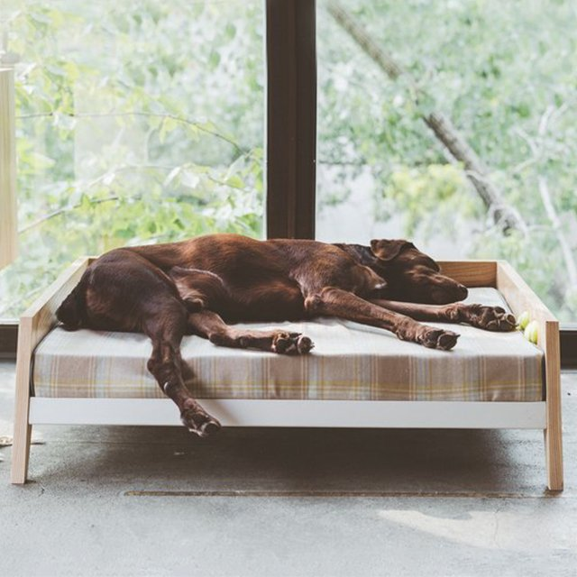 Winston Dog Bed