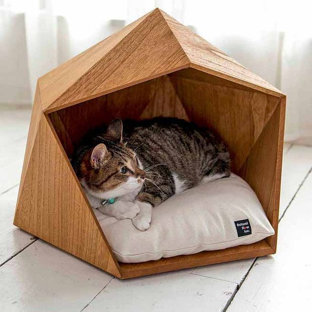 how to build a cat house for winter