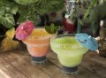 Margarita FREEZE Cooling Cups by HOST