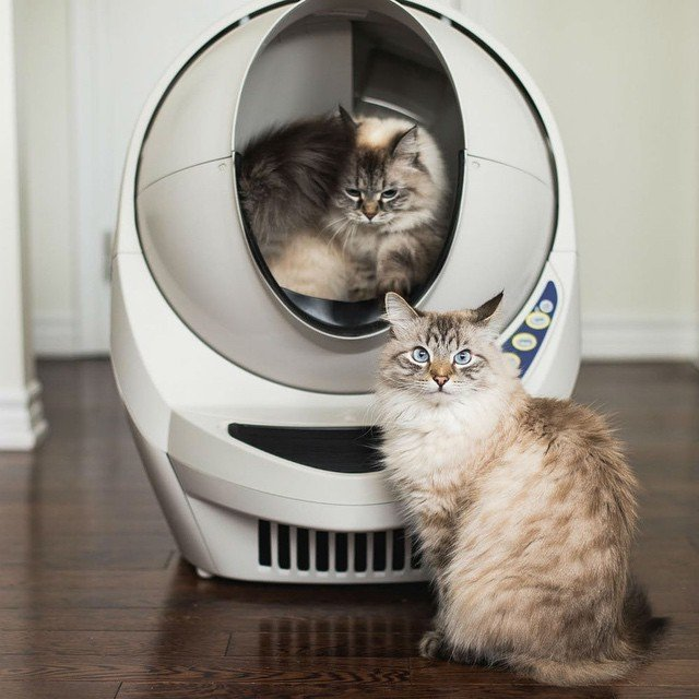 Litter Robot III Open Air Self Cleaning Litter Box