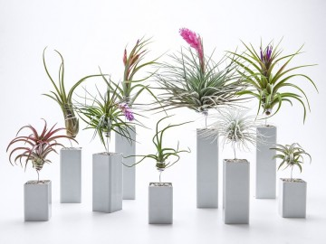 Airplantman_AirplantVessel_SoftGrey_group_1024x1024