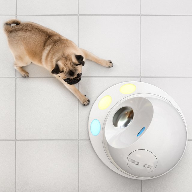 CleverPet Smart Treat Console