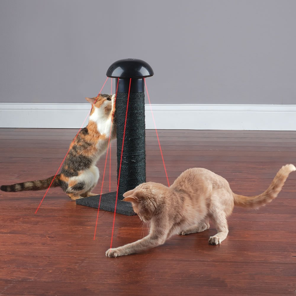 Cat Laser Scratch Post
