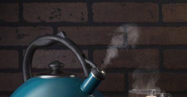 Blue Enamel Coated Whistling Tea Kettle by Osaka Coffee
