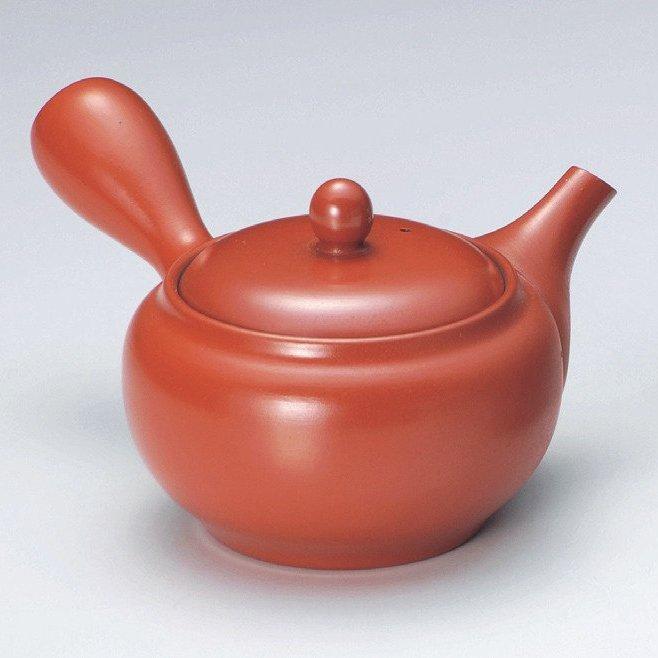 Tokoname Fukamushi Mesh Kyusu Tea Pot by Koizumi
