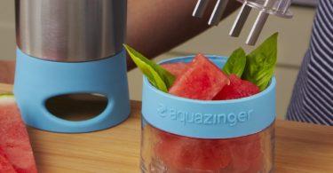 Aqua Zinger Fruit Infusion Water Bottle