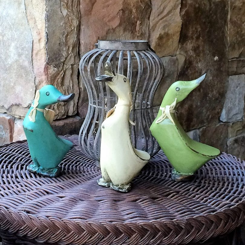 Wooden Duck Set