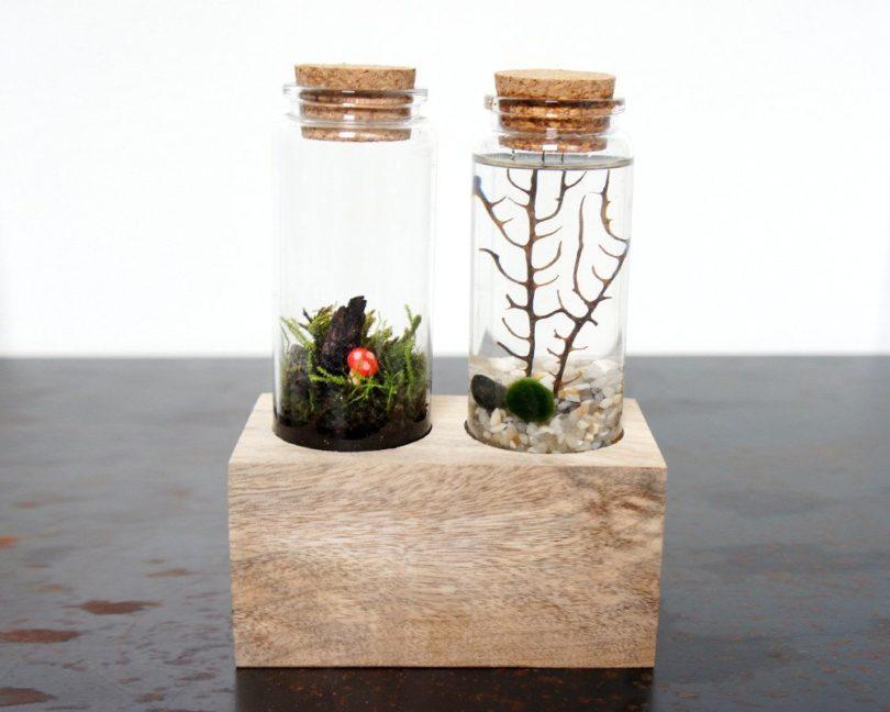 Land & Sea Terrarium Set