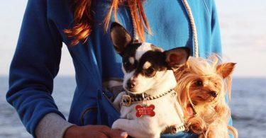 Roodie Pet Hoodie