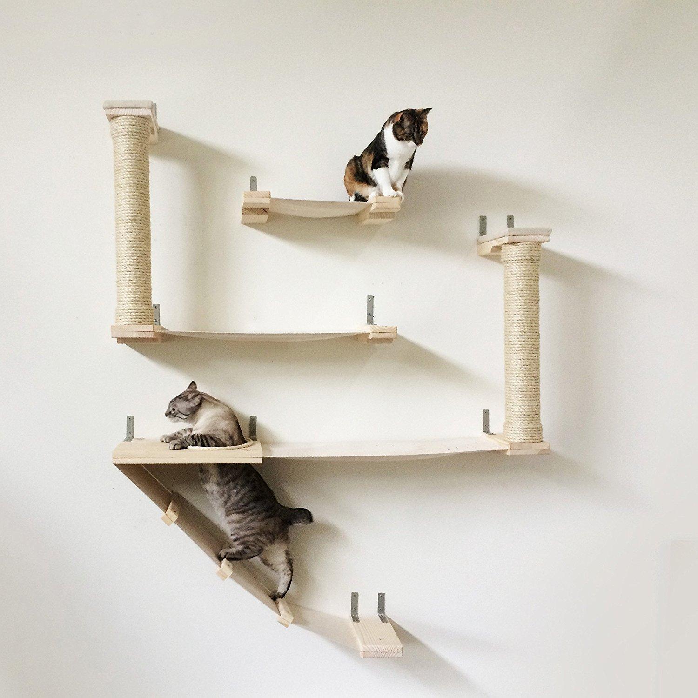 CatastrophiCreations The Roman Cat Fort