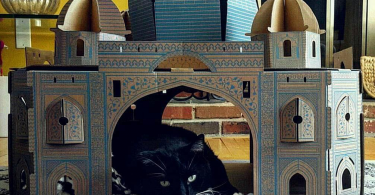Taj Mahal Cat House