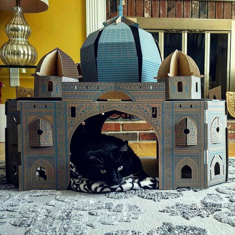 Taj Mahal Cat House