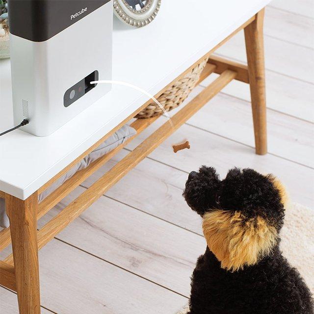 Petcube Bites Interactive Camera