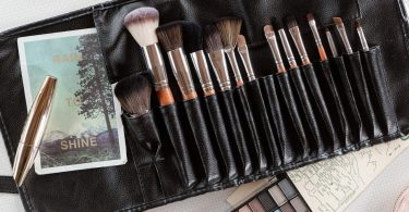 Palette Professional Makeup Brush Collection