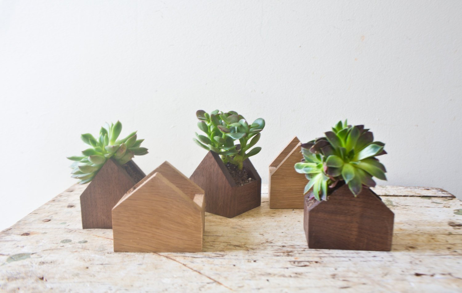 Tiny House Shaped Plant Box